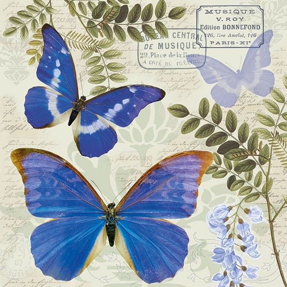 "Servietten ""Blue Morpho"""
